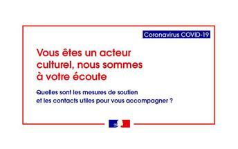 Coronavirus Covid-19 : installation du conseil des territoires pour la culture par la préfète du Grand Est
